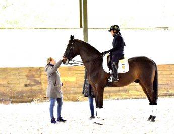 สมเด็จพระเจ้าลูกเธอเจ้าฟ้าสิริวัณณวรี นารีรัตนราชกัญญาทรงเข้าร่วมหลักสูตรการขี่ม้าระดับนานาชาติ กับม้าคู่พระทัย Prince Charming WPA